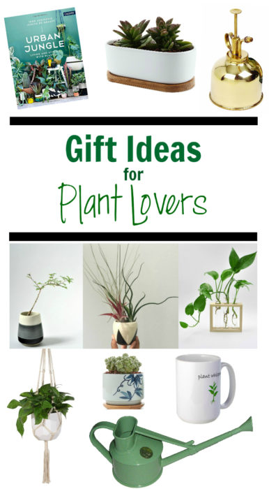 Gift Ideas for Plant Lovers - Clever Bloom