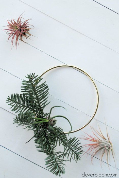 This modern DIY Air Plant Wreath is easy and perfect for any holiday! Plus a link on how to care for tillandsia.