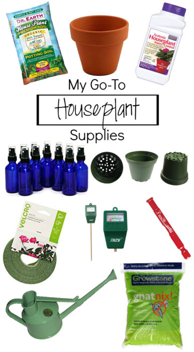Here's a list of go-to houseplant supplies for your every day needs - Clever Bloom