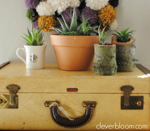 These DIY succulent planters are perfect for your home or use as a wedding centerpiece. Made from an old Christmas tree stump, your succulents can grow inside in an outdoor environment! Visit cleverbloom.com for an easy tutorial with lots of pictures to help you along.