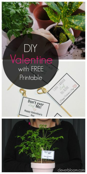 DIY Valentine with Free Printable. This Plant Valentine is a great candy alternative. Free Printable Flags to stick in the pots give it the perfect touch!