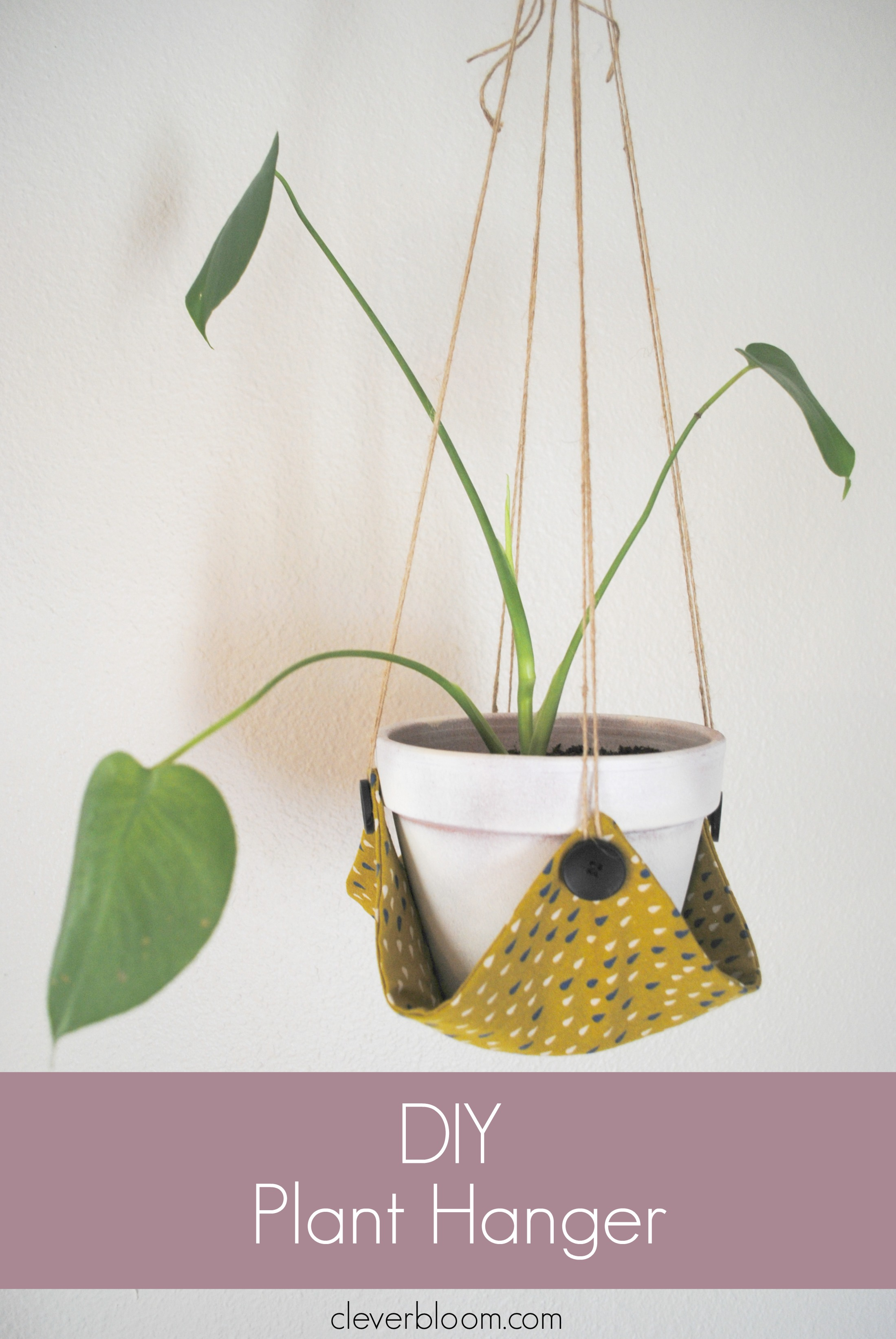 Gift Ideas For Plant Diy Hanger