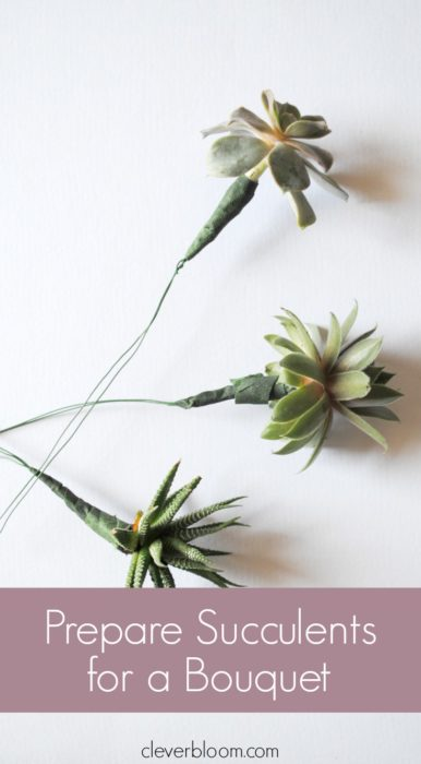 Learn how to prepare succulents for a bouquet and then Make a Tiny Succulent Bouquet for any occasion! And when you're done with the bouquet re-pot the succulents! Win/Win!!