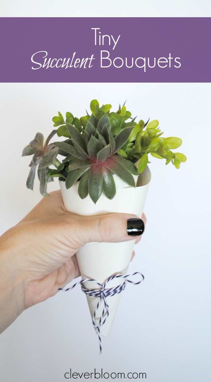 Tiny Succulent Bouquets