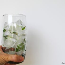 Mint Leaf Ice Cubes