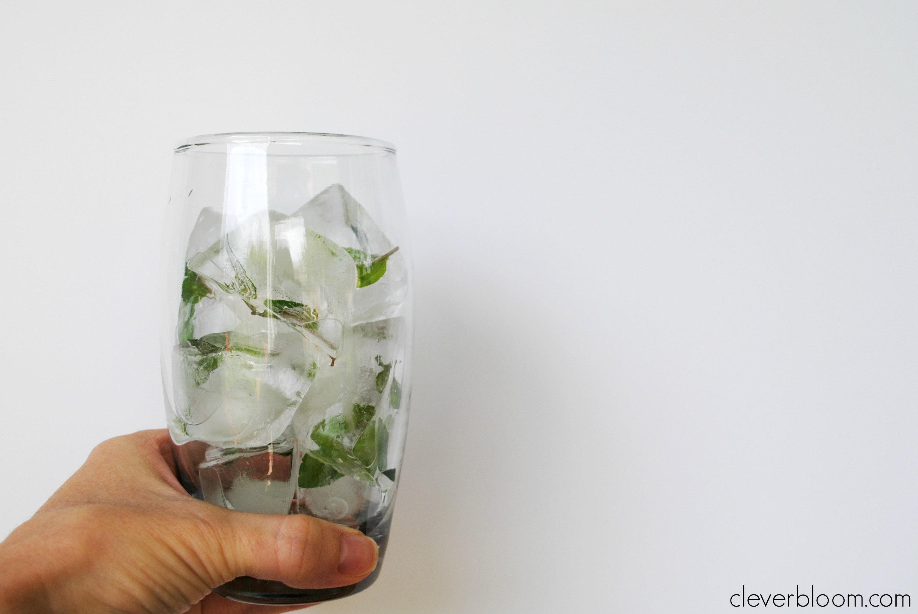 Mint Leaf Ice Cubes
