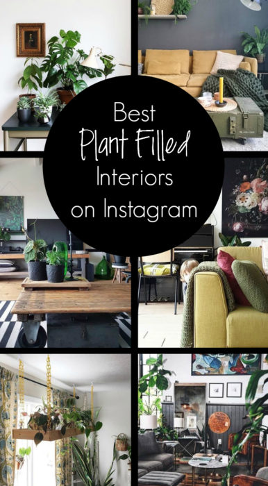 Click here for some of my favorite plant filled interiors on Instagram. Plants - Urban jungle