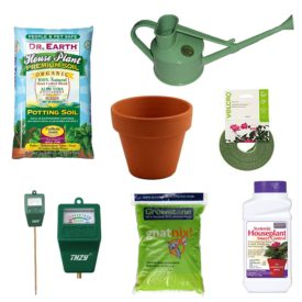 My Go-To Houseplant Supplies