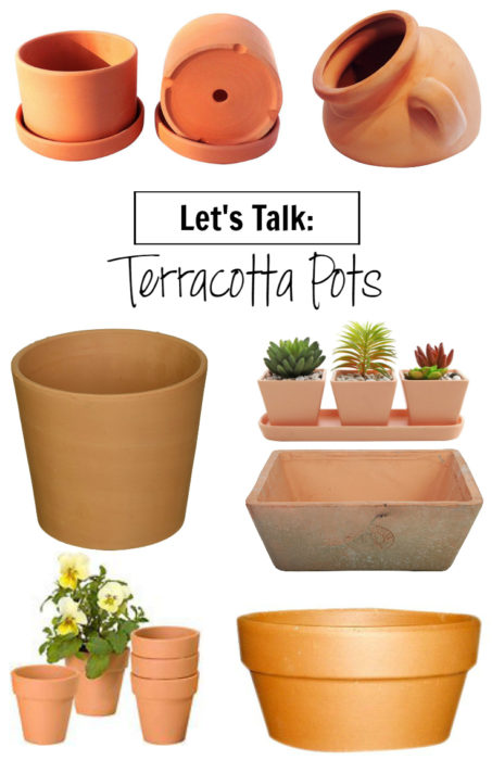 Learn all about terracotta pots including pros/cons and what plants can be housed in them - Clever Bloom
