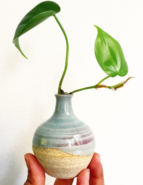 Plant Lover Gifts - Knight Ceramics Pots and Bud Vases.