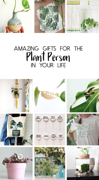 Amazing Gifts For The Plant Person In Your Life Clever Bloom