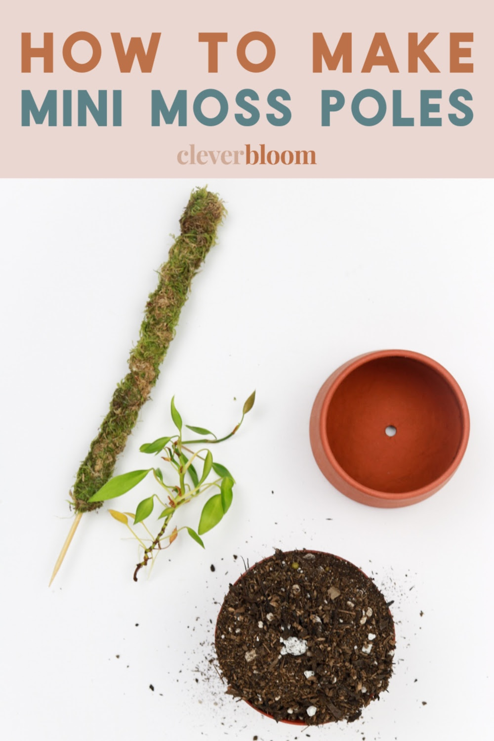 How To Make A Mini Moss Pole For Your Plants